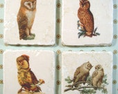 Marble coasters - Owls