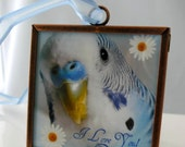 Blue Budgie Ornament