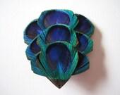 Peacock - Hair Clip