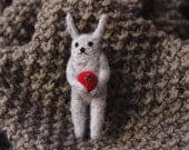 Rabbit diet. With tomato. Brooch.