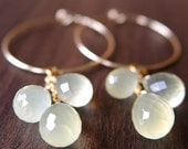 Lemon drops yellow chalcedony gold cluster hoop earrings