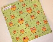 Little Green Owl Eco Friendly Reusable Sandwich Bag