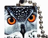 Owl Necklace on Glass tile - Includes chain and 4x6 print of this design Buy 3 and Get 1