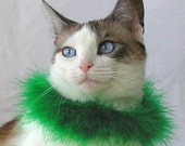 Emerald - Custom Fitted Boa Pet Collar