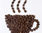 italian selected coffee for nice entertainments FOR TRADERS ONLY