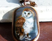 Owl  - fused glass pendant