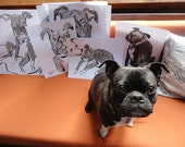 Japanese Ink and brush Drawing Session, One hour of Pet Portraits- pug, bugg, cat, bird