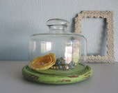 Distressed Wooden Cloche Display