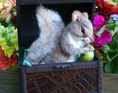 Pirates Treasure Box Baby Squirrel 100 percent Alpaca Needle Felted by Stevi T.