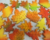 Fall Leaf Sugar Cookies