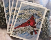 Cardinals  set of 10 cards