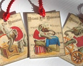 CO-323-Gift Tags-Vintage Circus Set of 8 Lion Elephants Clown Cow And Bull Lion Tamer Chimpanzee Playing Banjo Colorful Fun - SiriusFun