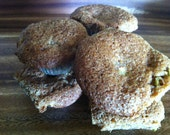 Bite-Sized Apple Walnut Muffins