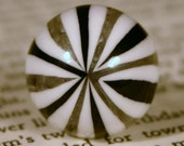 Pantomime ... Black and White Striped Cirque ... Ring