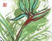 Bird of Paradise 4x6 Print