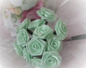 Tiny Mint Rose