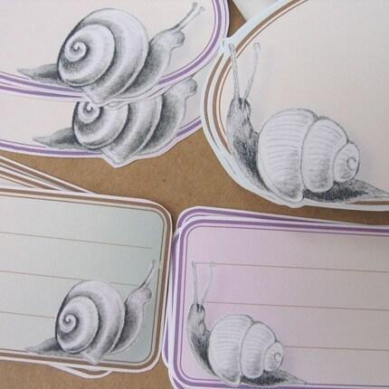 Snails Blank Sticky Labels, Set of 12