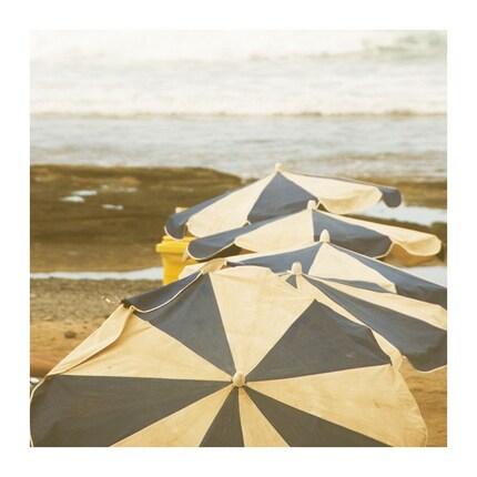 beach umbrellas - 8x8 original fine art photographic print