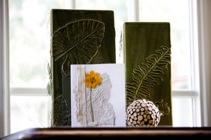 Pressed Coreopsis Flower Cards