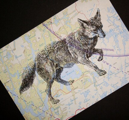 Fox Print on Topographical Map - Canada - 5 x 7