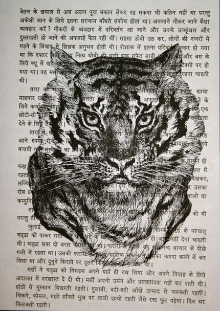 Tiger Face on Sanskrit Text - 5 x 7