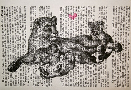 Lion Mother and Cubs on French Text - 5 x 7