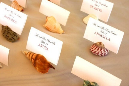 Natural Shell Place Card Holders- Set of 50 with FREE SHIPPING