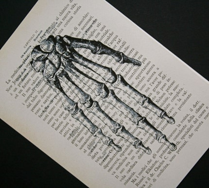 Hand Skeleton on Italian Text - 5 x 7