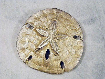 Vintage Gold Tone Metal Sand Dollar Brooch Pin Retro