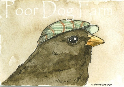 BIRDS IN HATS SET (SPECIAL set of 4 ACEO PRINTS) (...and 1 bonus secret aceo)