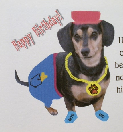 Dachshund Funny Birthday Cards Set Of 3 With Envelopes