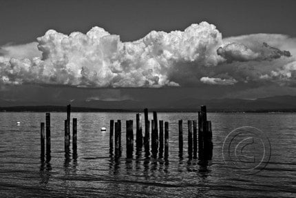 Scattered  Showers - 8 x 12 Photograph Black and White