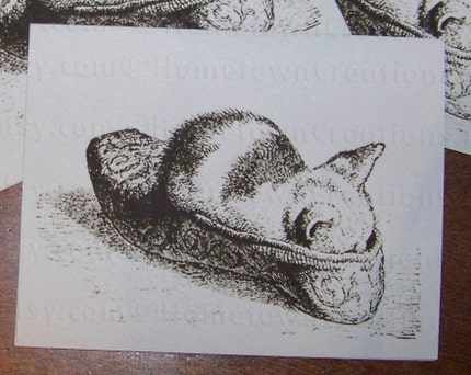 Notecards for All Ocassions - Kitten Sleeping In Shoe