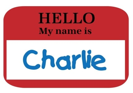 HELLO MY NAME IS Personalized T Shirt or Onesie Boys Girls Back To School