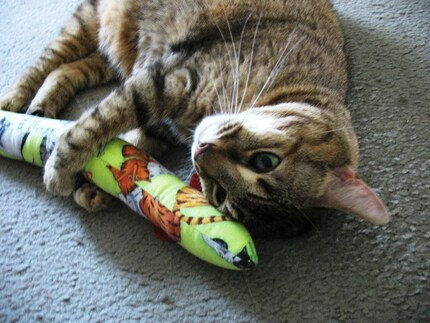 Cat Toy/Snakey Catnip Mouse