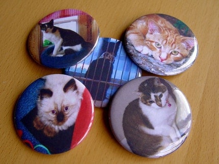 DOODLEBUG MANOR MAGNET SET BY THE FABULOUS ANIMAL RESCUE PROJECT