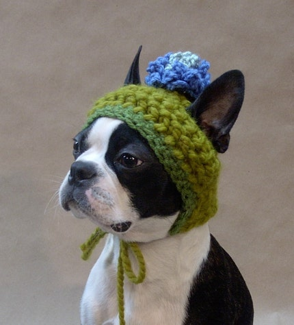 Blue Blossom Dog Hat - Size Small