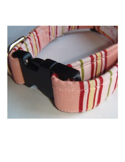 Candy Stripe-Adjustable Dog Collar