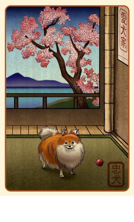 Pomeranian Japanese