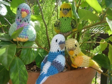 Angry Birds Crochet Patterns | Flickr - Photo Sharing!