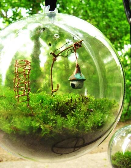 INTERNATIONAL The Secret Garden Moss Terrarium Globe INTERNATIONAL kit