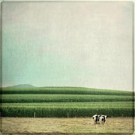 Mariella 8x8 Fine Art Photograph- Tina Crespo
