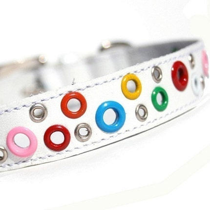 Loki Puppy Leather Collar - White