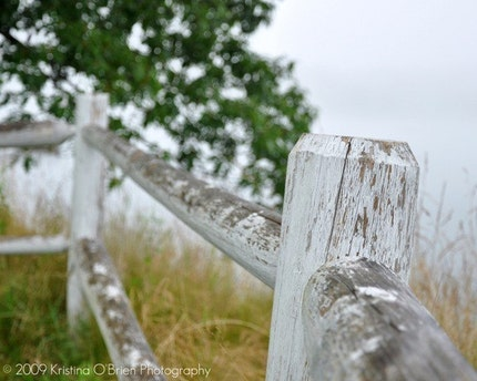Seaside Fence 8x10 Fine Art Photographic Print