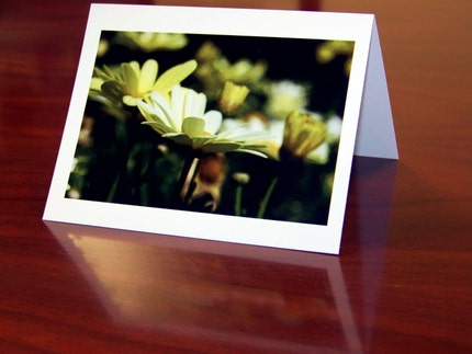 Yellow Flower Note Cards