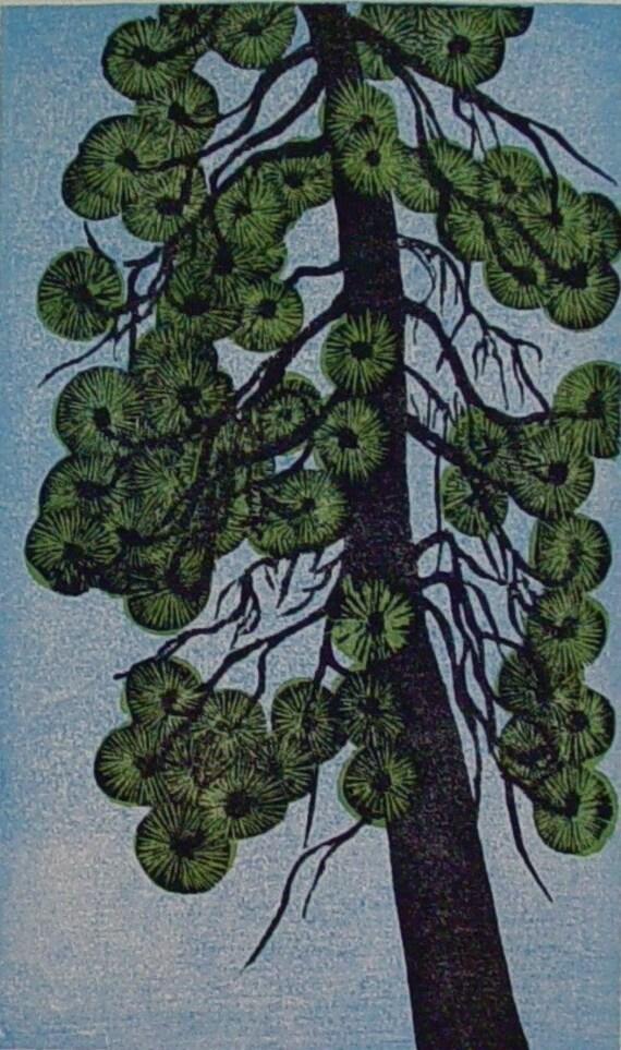 Ponderosa pine II (original woodcut)