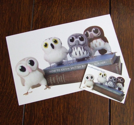 Hoots Owls and Books Large Postcard and Magnet Set