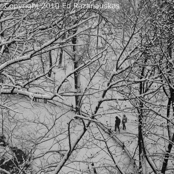 Winter Walk - 10x10 Fine Art Photograph - Lovers out for a walk in a February snow storm.  Taken at Frick Park in Pittsburgh PA.  Makes a great christmas gift.