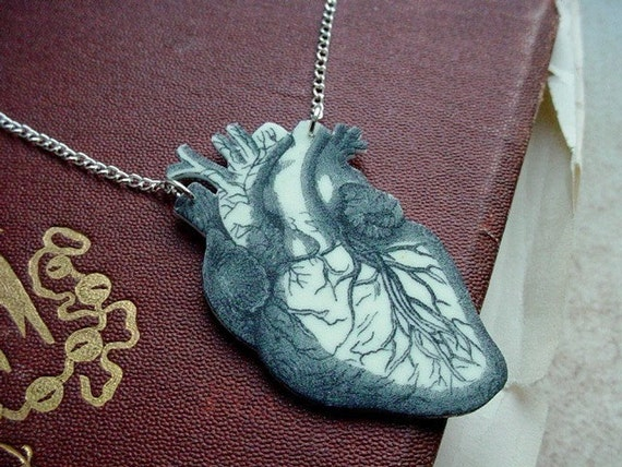 anatomical human heart necklace