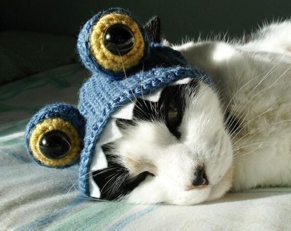 knit cat hat